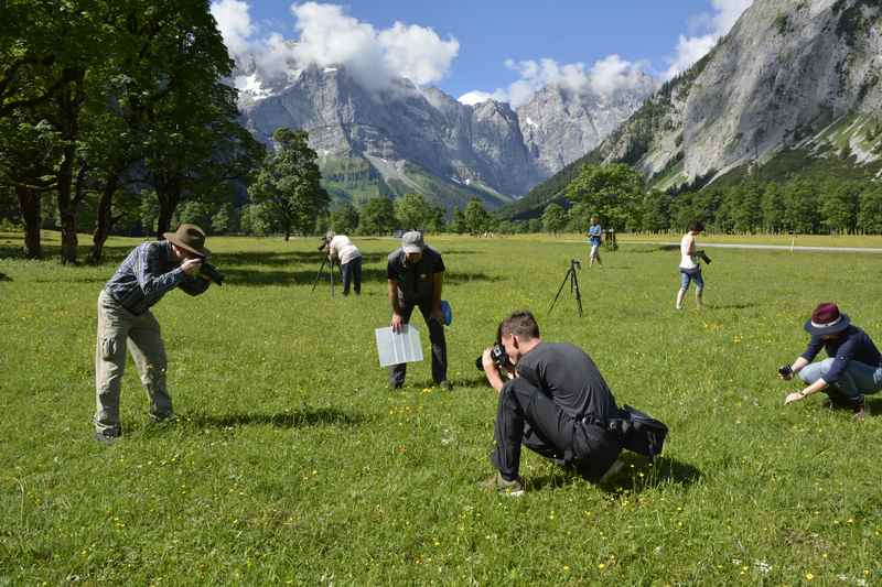 Direkt am Ahornboden - Fotokurs für Makrofotografie