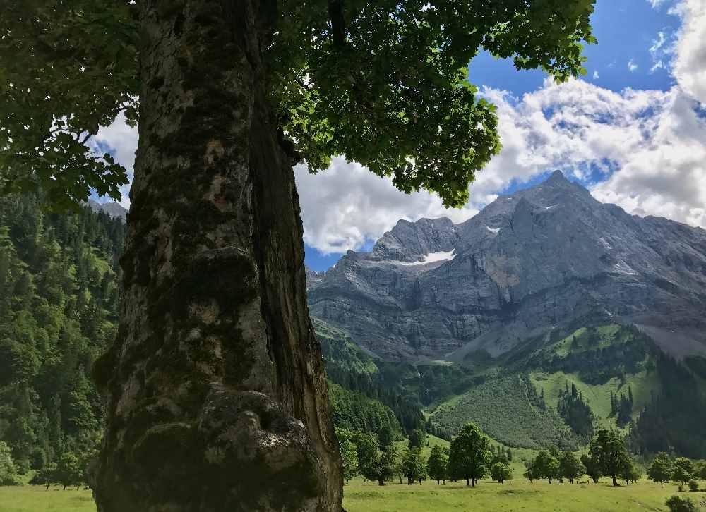 Großer Ahornboden mit Blick auf die spitzen Berge im Karwendel