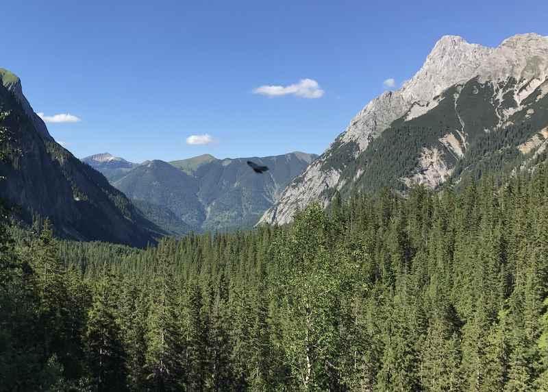 Der Blick zurück durch das Tal, rechts die Falkengruppe - so heißen diese markanten Spitzen im Karwendel