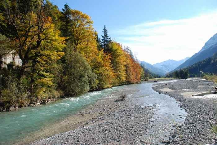 Herbstfärbung Karwendel: Bunt gefärbte Buchen am Rißbach nahe Hinterriß im Karwendelgebirge