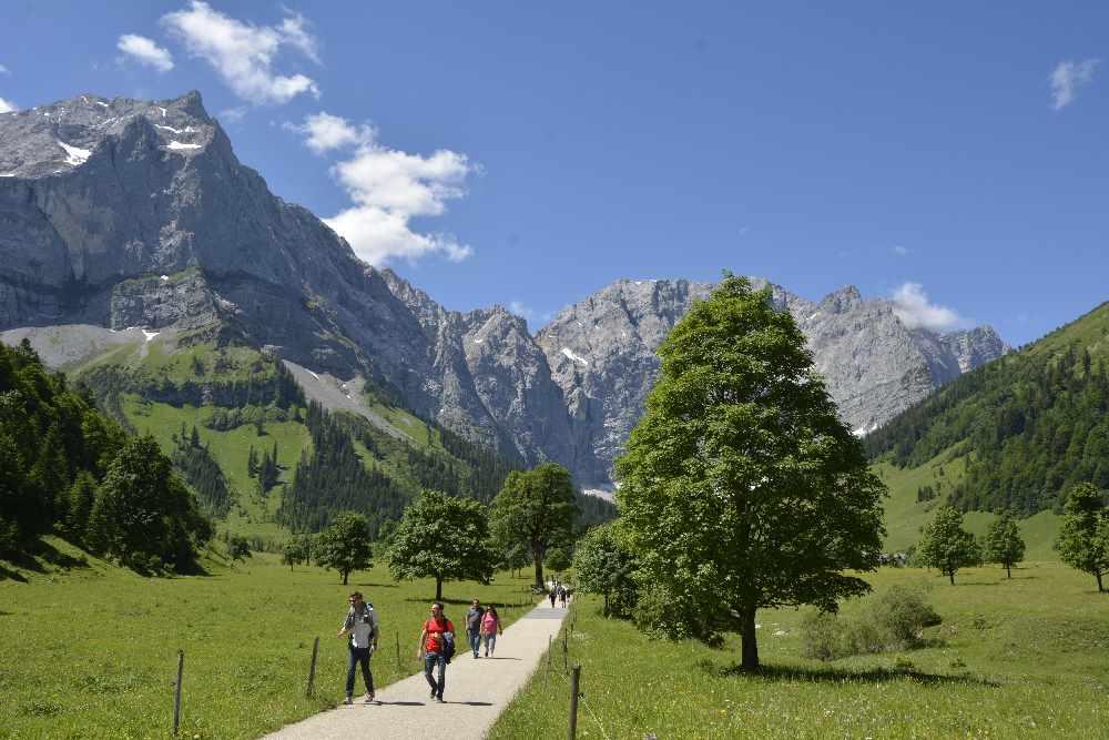 Frühlingswanderung am Großen Ahornboden - zwischen dem frischen Grün der Ahornbäume spazieren