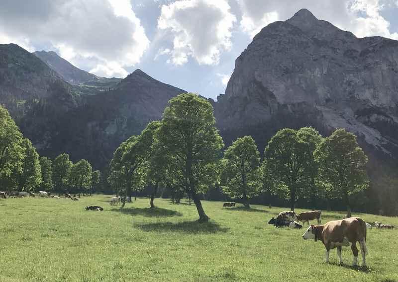 Das ist der Blick vom Lenker aus bei der Radtour durch den Ahornboden ins Karwendel
