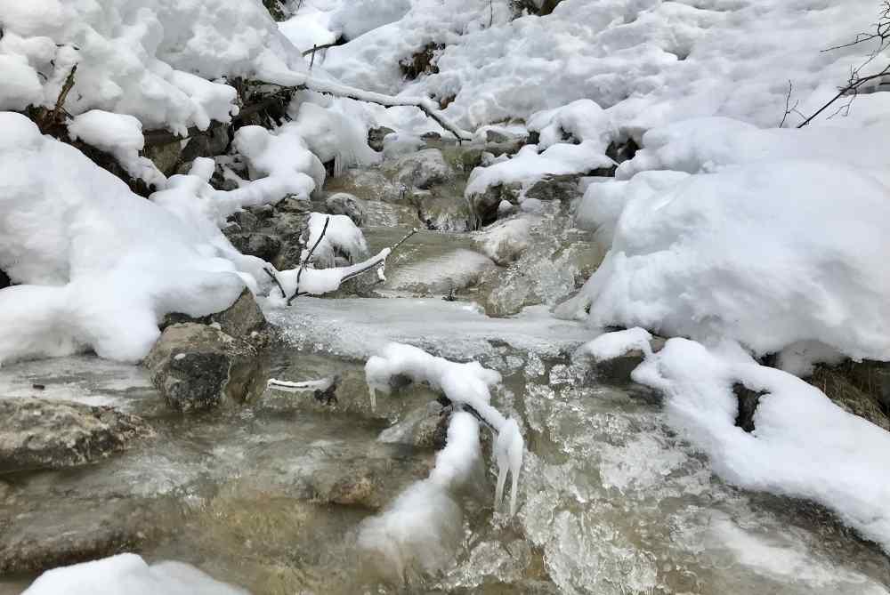 Bei Lenggries rodeln: Verschneite Winterlandschaft und Eisfiguren an den Bächen