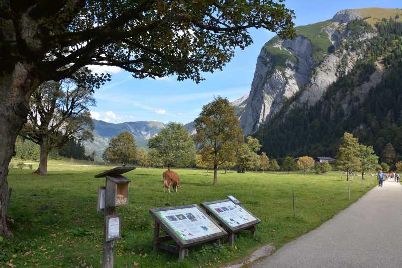 Auf dem Lehrpfad vom letzten Parkplatz in der Eng bis zur Engalm gibt es Wissenswertes rund um den Ahornboden und das Karwendel zu lesen, auch gut mit Kindern zu entdecken