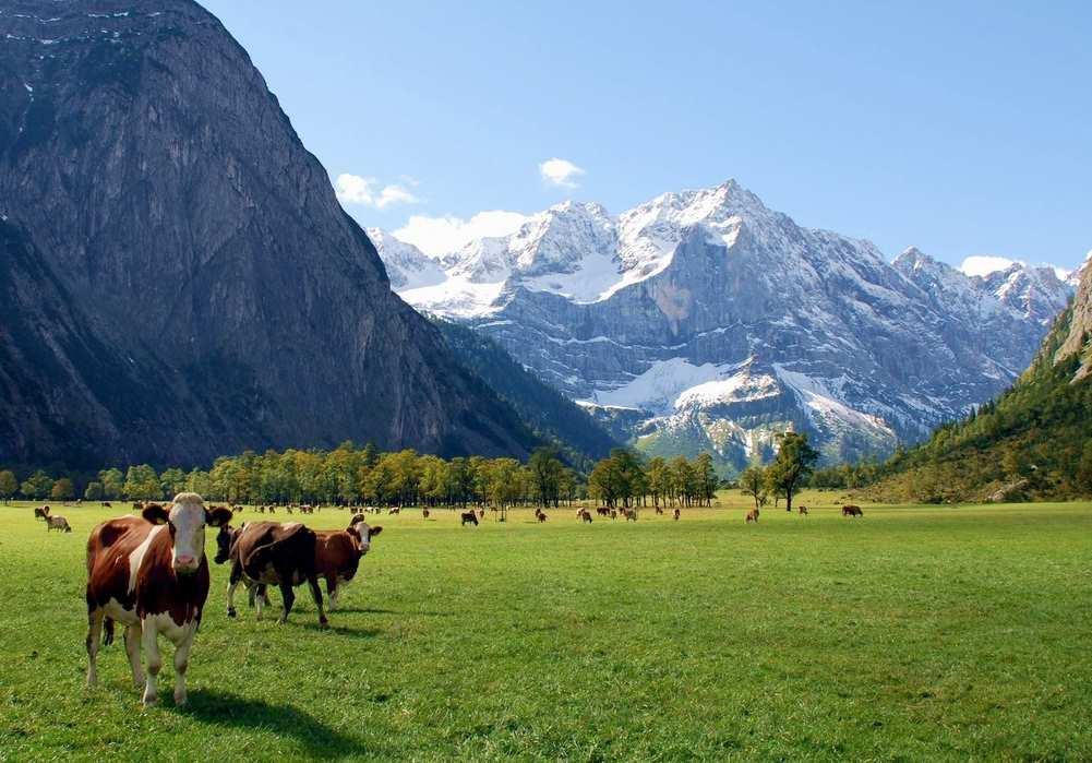Der Große Ahornboden mit der Engalm ist ein Traumort in den Alpen - muss man mal gesehen haben!