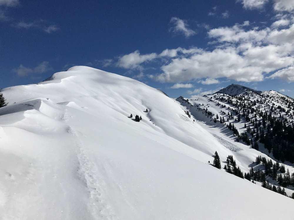 Schönalmjoch Skitour: Der schöne Gipfelhang oben ist ein Traum, leider viel zu kurz