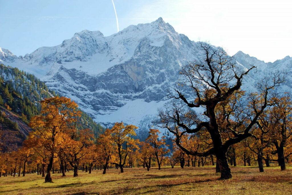 Der schönste Platz der Alpen im Herbst: Wenn die Blattfärbung am Ahornboden in vollem Gange ist