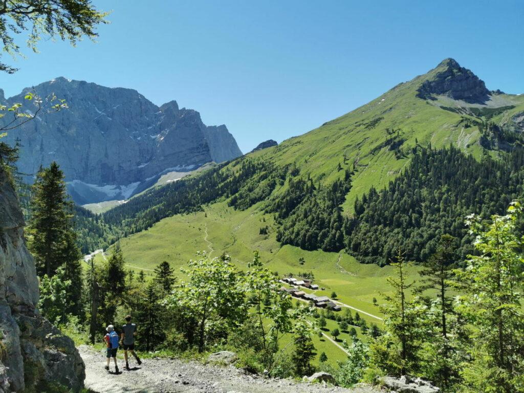 Von der Binsalm ins Almdorf Eng wandern - vom Wanderweg kannst du schon zur Engalm hinunter schauen
