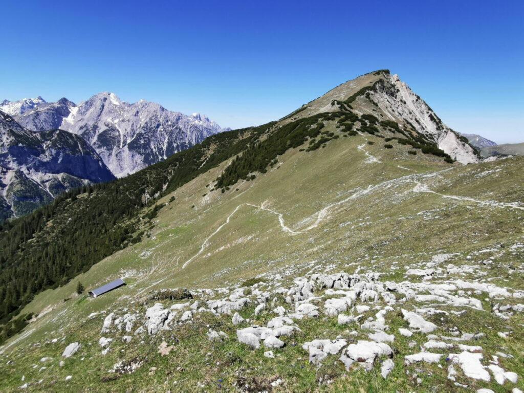 Auf den Kompar wandern: Im Bild links ist der Hasentalalm Hochleger - rechts der Gipfel