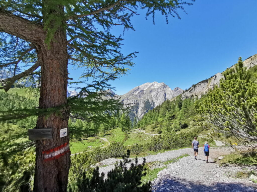 Hahnkampl Abstieg: Vom Lamsenjoch zur Binsalm wandern