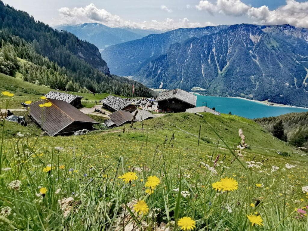 Blick von der Dalfazalm über den Achensee in den Naturpark Karwendel