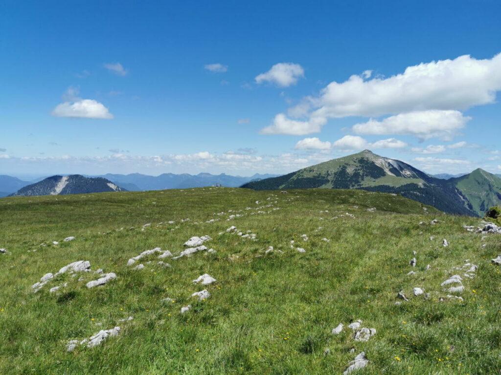 Vorderskopf Hinterriss - so flach ist der Gipfel. Ganz klein mittig im Bild die Menschen am Gipfelkreuz